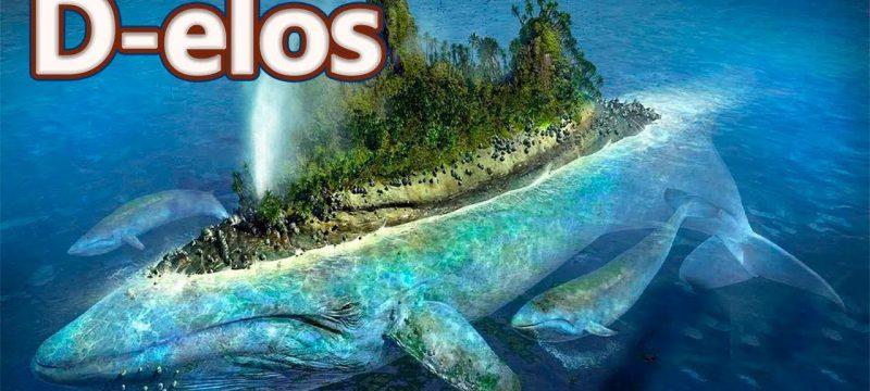 delos 800x360 - Yunan adaları. Delos: Ölümün yasak olduğu ada.